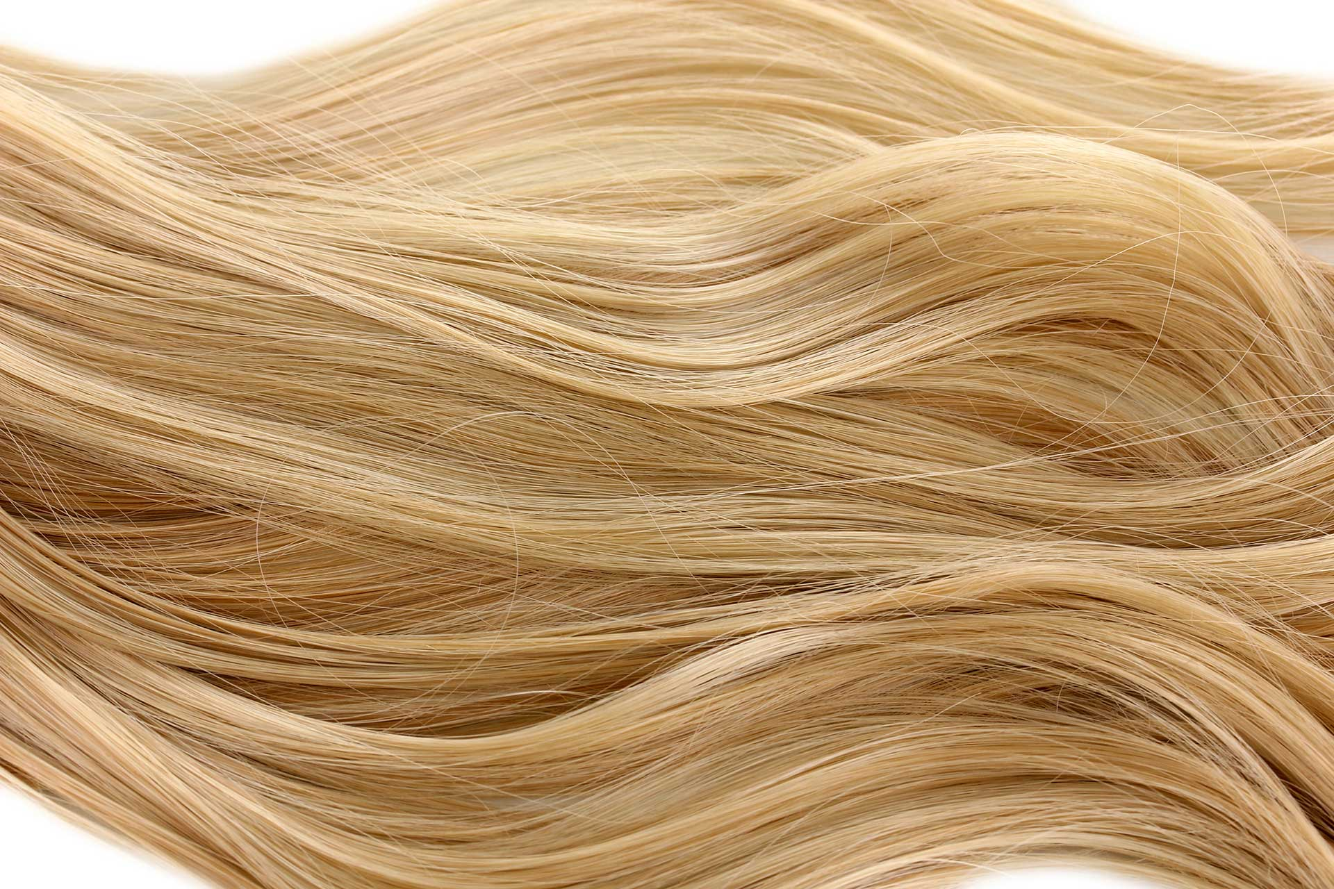 Subtle Change In Dna Protein Levels Determines Blond Or