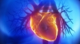 Molecular cause of heart condition identified by researchers