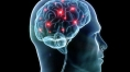 More GABA in one brain region linked to better working memory