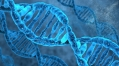 Tissue-specific gene expression uncovered, linked to disease