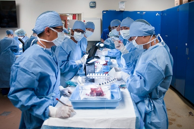 students in surgery lab