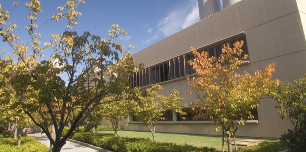 front of the Falk Cardiovascular Building and front walkway bordered by trees in autumn