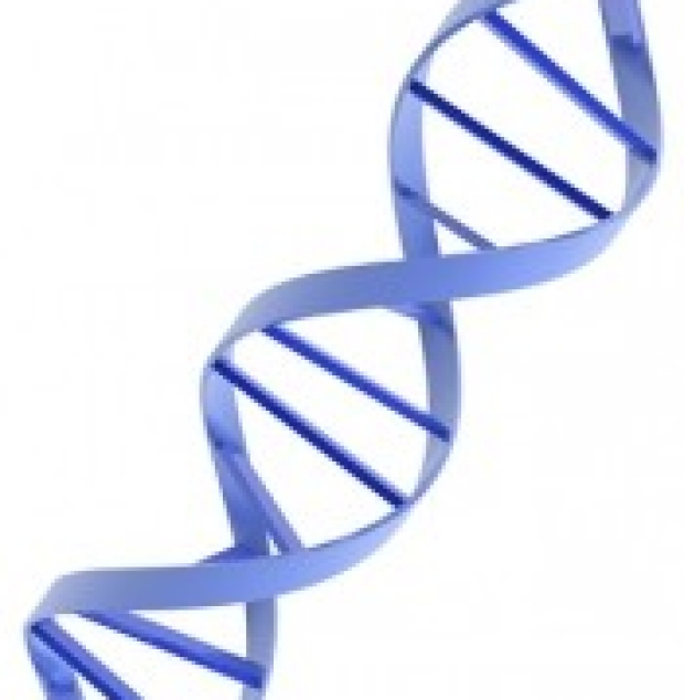 purple DNA helix section