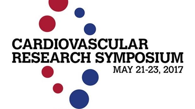 Duke-Stanford Symposium Logo