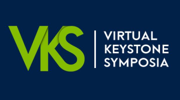 vks-logo