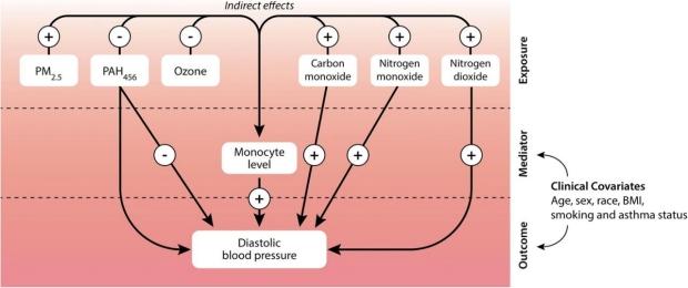 graphic illustrating analysis of exposure influencing blood pressure