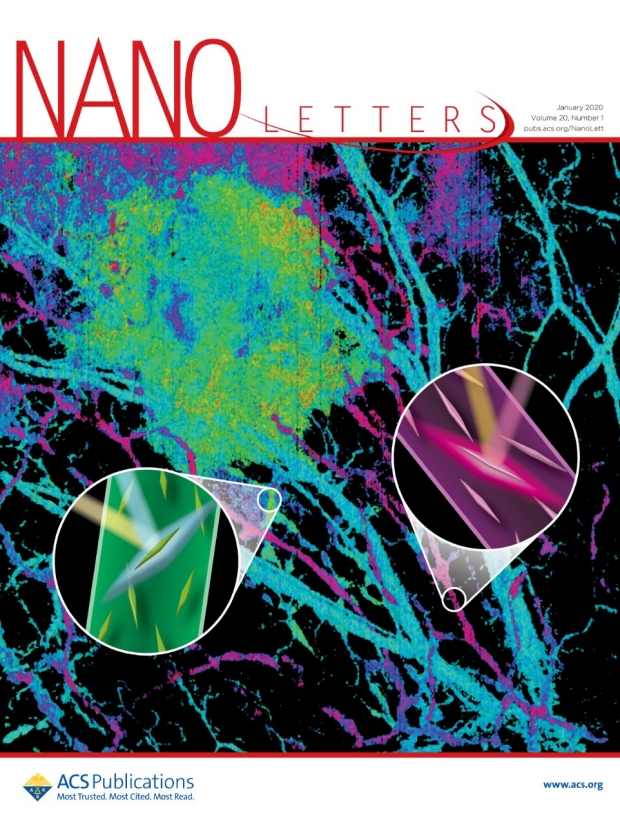 Cover of Nano Letters, volume 20, issue 1, January 8, 2020, depicting multiplex imaging with gold nanobipyramids