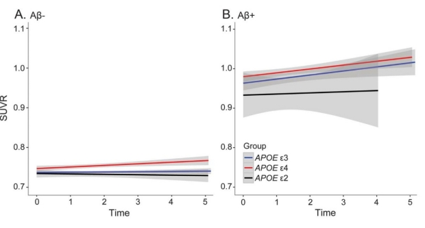 Amyloid Accumulation in APOE4+