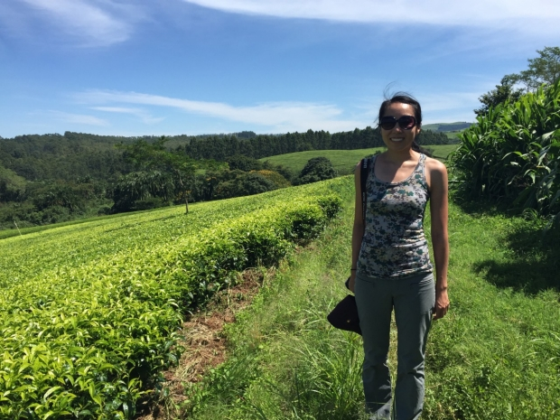 neurology-global-health-Ming-Tsao-gh-scholar _2015-2016-tea-plantation