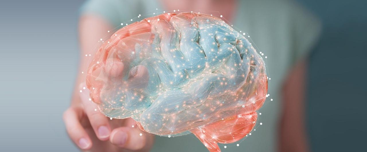 Stroke Recovery Program | Neurology & Neurological Sciences