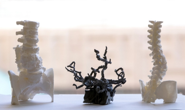 3-D print models of spine and neural networks
