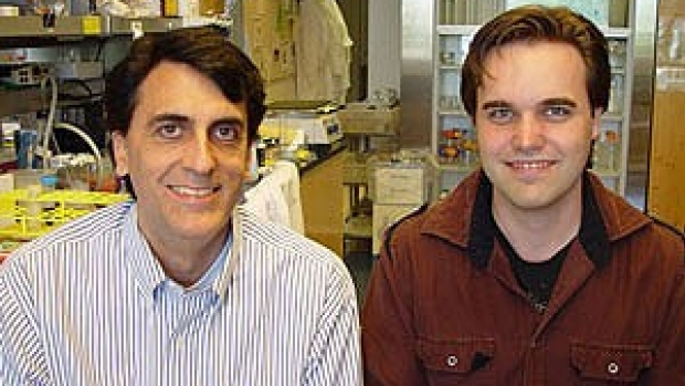 Study finds molecular powerbrokers in cancer's spread