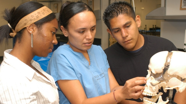 Program opens doors to the world of medical science