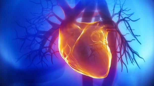 Heart-therapy researchers develop nanobullet drug delivery system