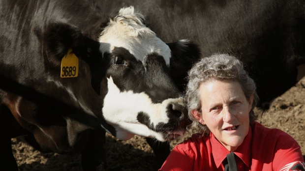 5 Questions: Temple Grandin discusses autism, animal communication