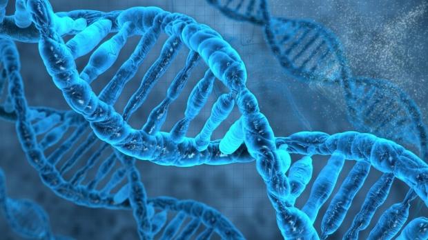 New center established to study human genome regulation
