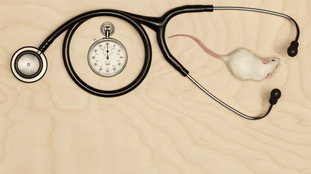 Stanford Medicine magazine reports on intersection of time, health