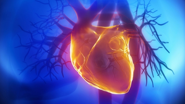 Free symposium on heart-tissue engineering set for May 22