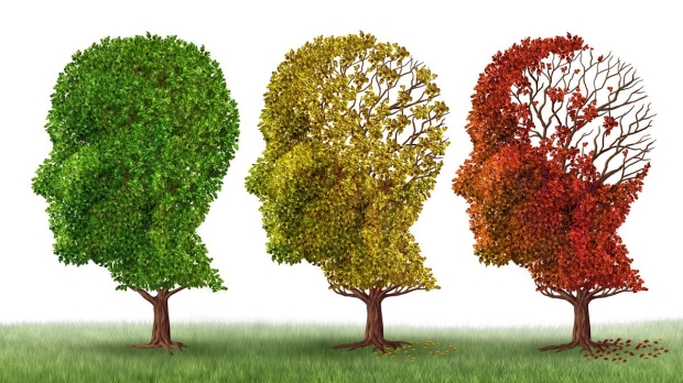 Stanford-based Alzheimer's Disease Research Center to be launched