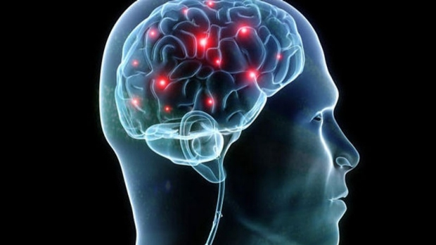 Brain chemical tied to working memory