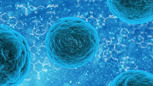 Stem cells police themselves to reduce scarring, study finds