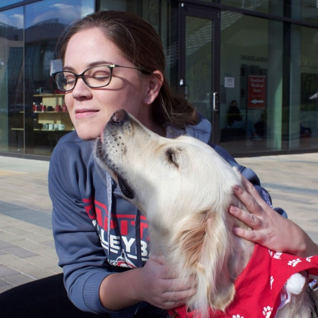Therapy dogs take a bite out of student stress before exams