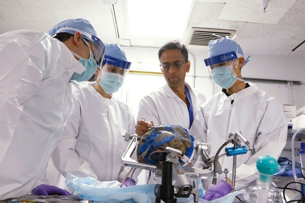 Four surgeons practicing in the neuroanatomy lab