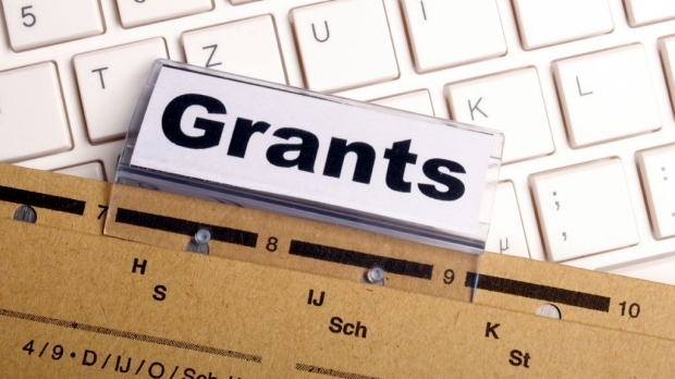 Grants announced to investigate IBD