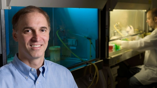 Steven Artandi tapped to lead Stanford Cancer Institute