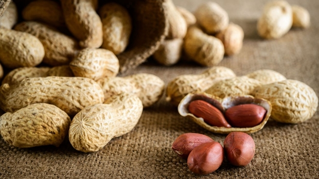 Antibody injection stops peanut allergy for 2 to 6 weeks, study shows