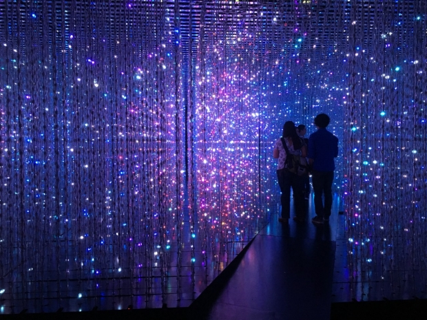 Silhouettes at Crystal Universe exhibit at TeamLab Pace Gallery