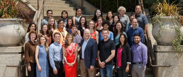 stanford pain division faculty and staff