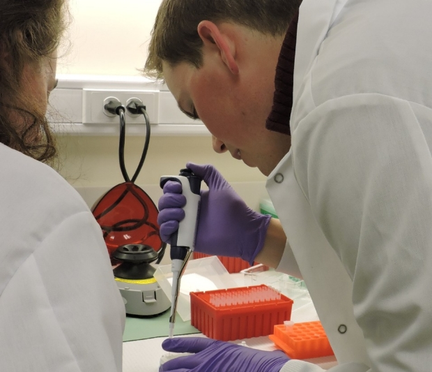 Picture of County lab workers testing samples