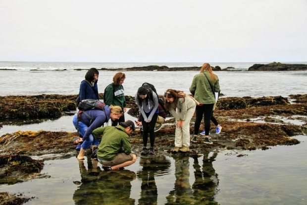 Poston Lab at Fitzgerald Marine Reserve - 2017
