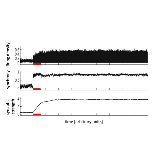 Low-frequency periodic stimulation in a neural network model with plastic synapses
