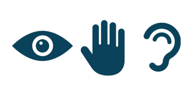 eye, hand, ear icons